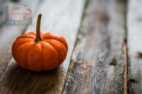 Hálaadás - Thanksgiving