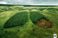 Kreatív design a természetvédelemben